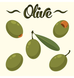Olive set hand drawn olives vector