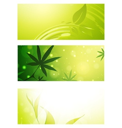 Eco banner set vector
