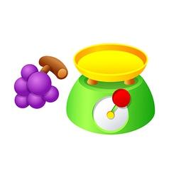 Icon scale and grape vector