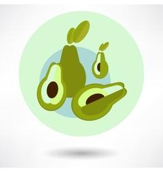 Avocado on a white background vector