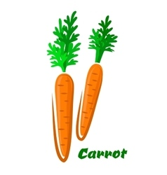 Fresh orange cartoon carrots vegetables vector