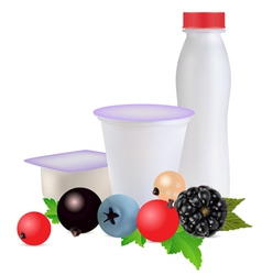 Dairy products with berries vector