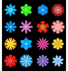 Set of flower blossoms vector