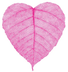 Red heart leaf vector