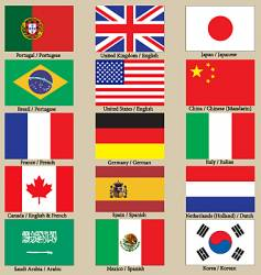 Internet language flags vector