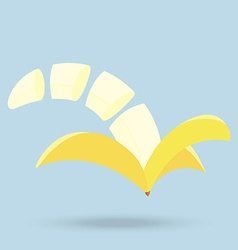 Banana slices isolated on background vector