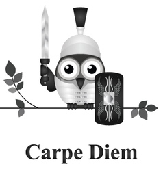 Seize the day vector