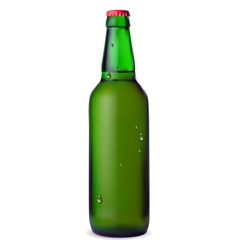 Green bottle of beer vector