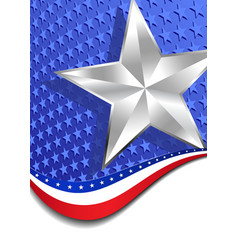Stars and stripes portrait silver star vector