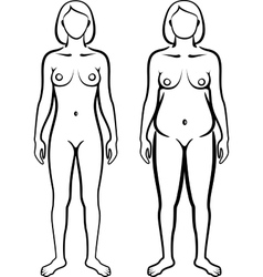 Set of female body types vector