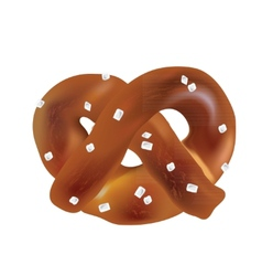 Soft bavarian pretzels objects vector