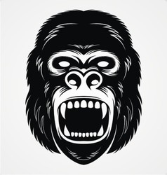 Wild gorilla head vector