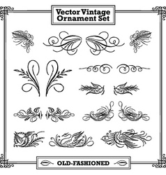 vintage floral and feather ornament set vector