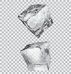 Transparent ice cubes vector