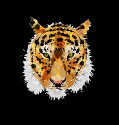 Tiger head made of colorful splashes vector