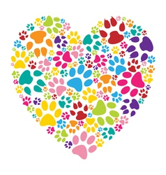 Heart paw print vector