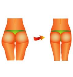 Female buttocks vector