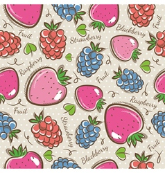 Patterns with strawberry raspberry and blackberry vector