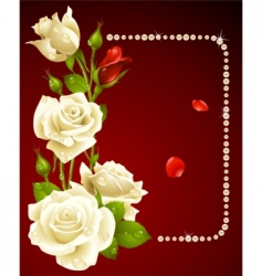 White rose and pearls vector