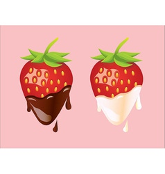 Two strawberries - cream and chocolate vector