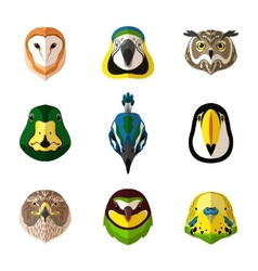 Wild bird set vector