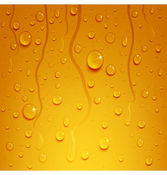 Beer background with water drops vector