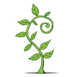 Little growing plant vector
