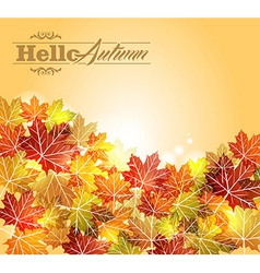 Vintage autumn leaves transparency background vector