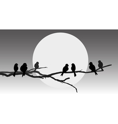 Birds sitting on a branch vector
