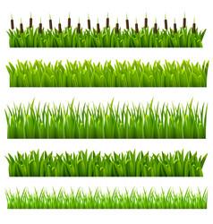 Grass green border vector