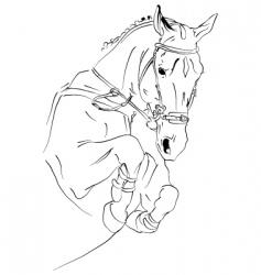 Horse jumps vector