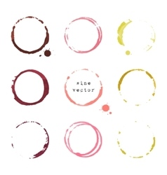 Wine round stains and blots vector
