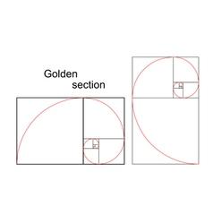 Double golden spiral vector