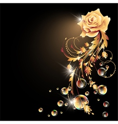 Rose star and bubbles vector