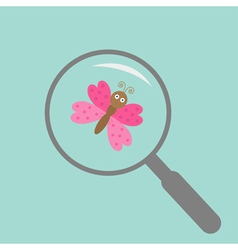 Butterfly insect under magnifier zoom lense flat vector
