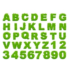 Green grass alphabet with letters and numbers vector
