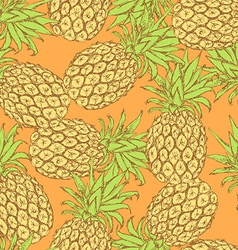 Sketch tasty pineapple in vintage style vector