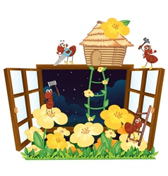 Ants bird house and window vector