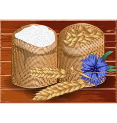 Wheat and flour vector