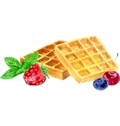 Watercolor wafers and berries vector