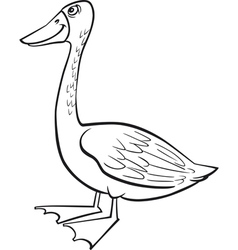 Coloring page of funny farm goose vector