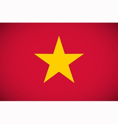 National flag of vietnam vector