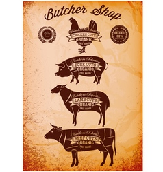Diagram cut carcasses of chicken pig cow lamb vector