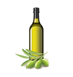 Olive oil bottle and olives isolated vector