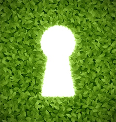 Green leaves with keyhole vector