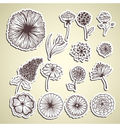 Stylish beautiful flower set sticker background vector