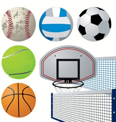 Detailed sports equipment set vector