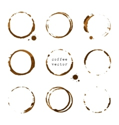 Coffee round stains and blots vector