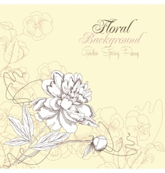 Floral background with pansies and peony vector