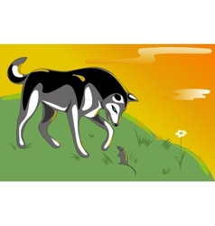 Husky and mouse vector